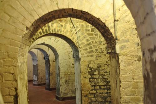 Discovering Old Fort Jackson Along Savannah River