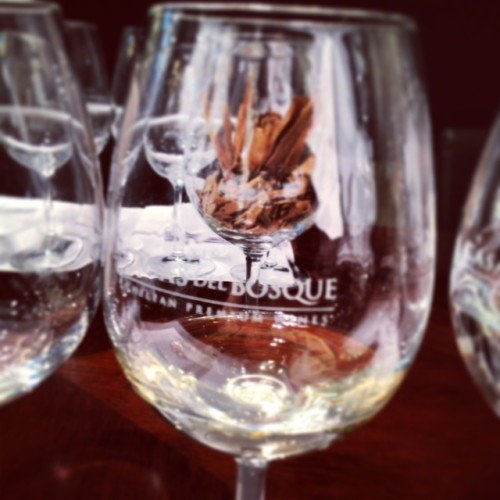 Casas del Bosque wine glass