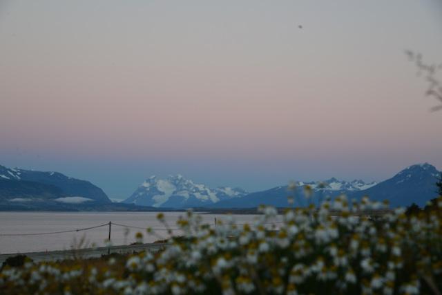 View from Weskar