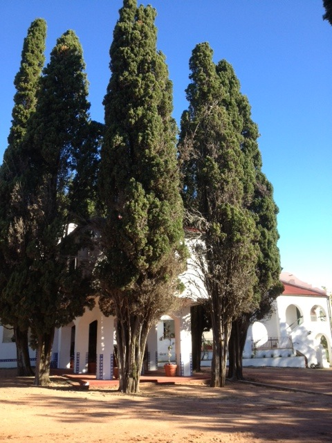 Protected: Estancia Stay At San Pedro de Timote Uruguay