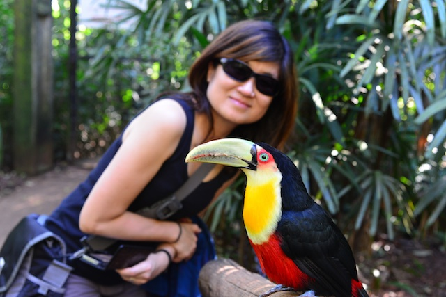 with a toucan