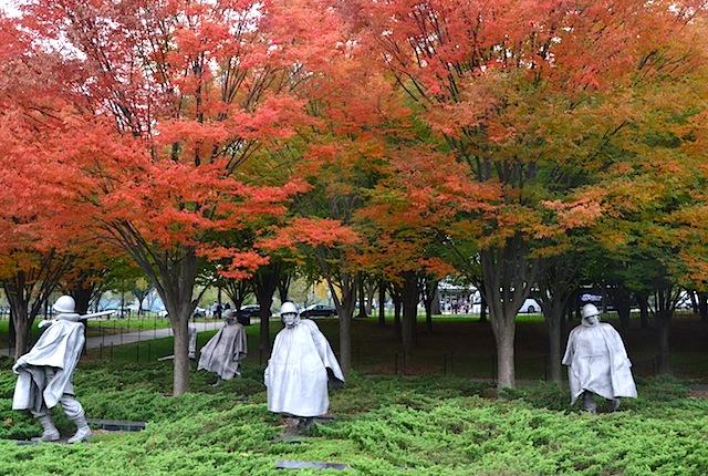 Fall colors in Washington DC