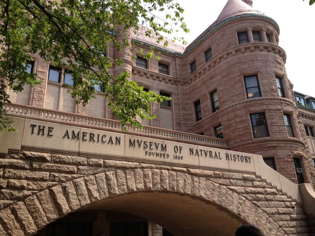 AmericanNaturalHistoryMuseum
