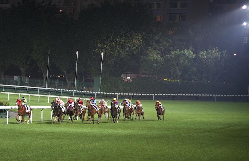 Hong Kong Horse racing