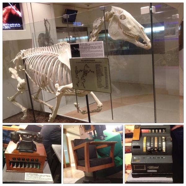 Museumhorseracing1