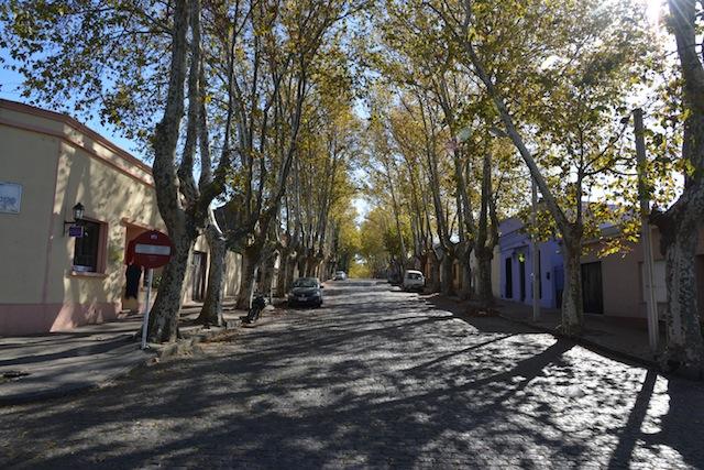 Cobbled stone street in Colonia del Sacramento