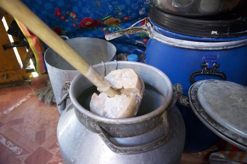 Airag - fermented horse milk