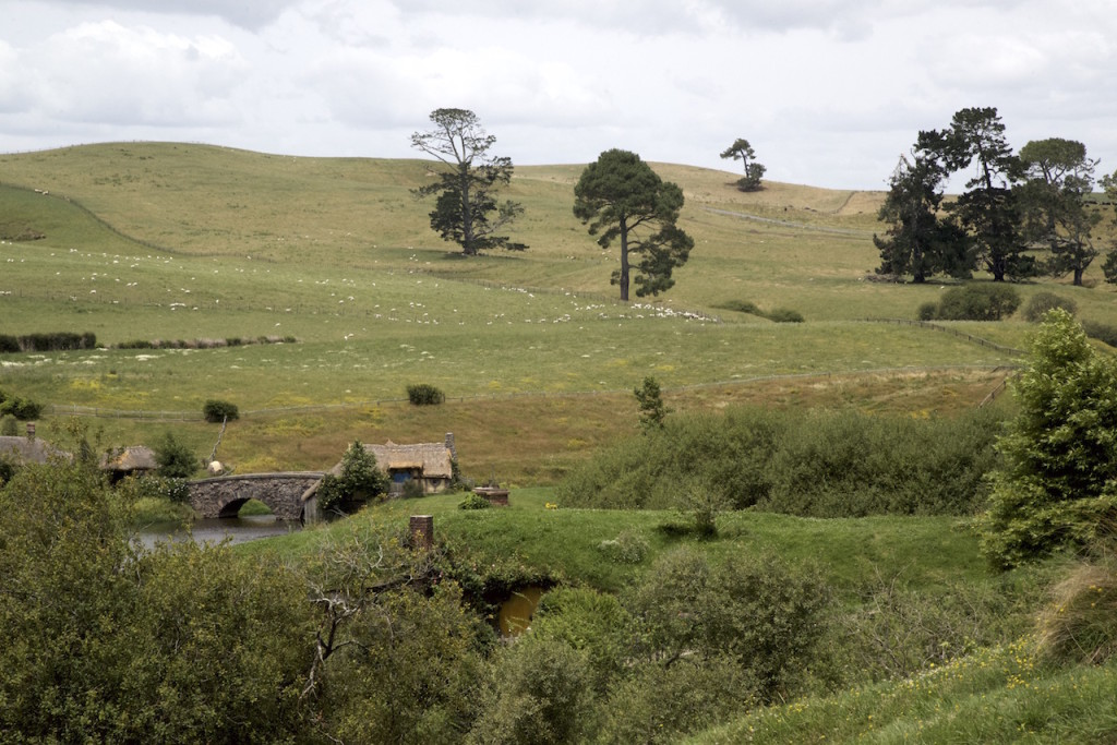 DSC_Landscape