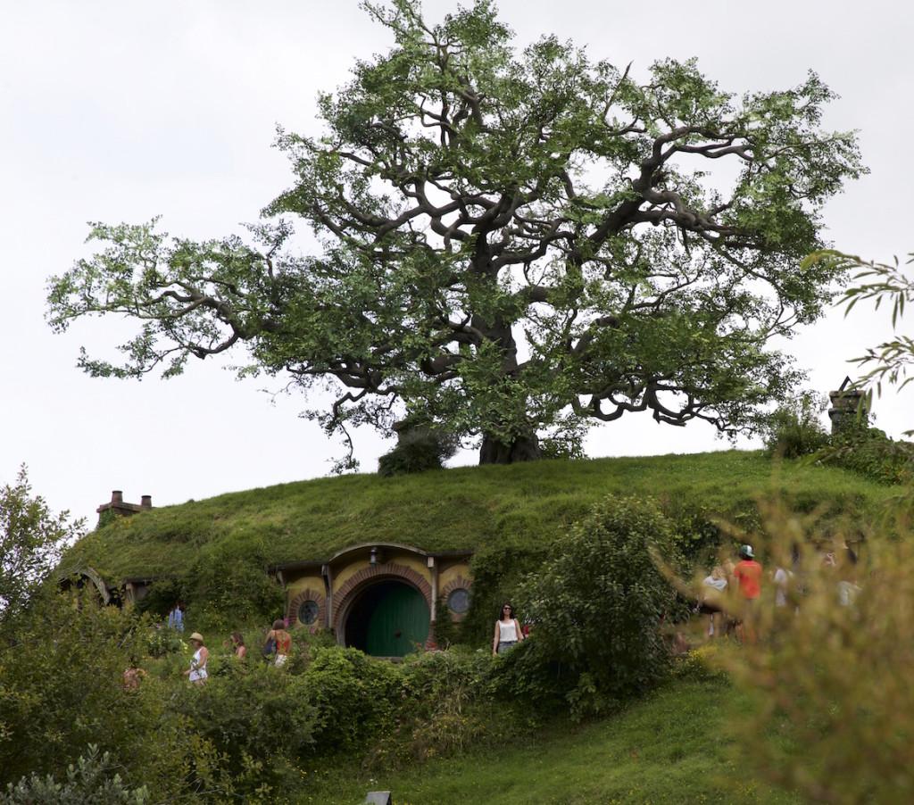 Hobbits oak tree