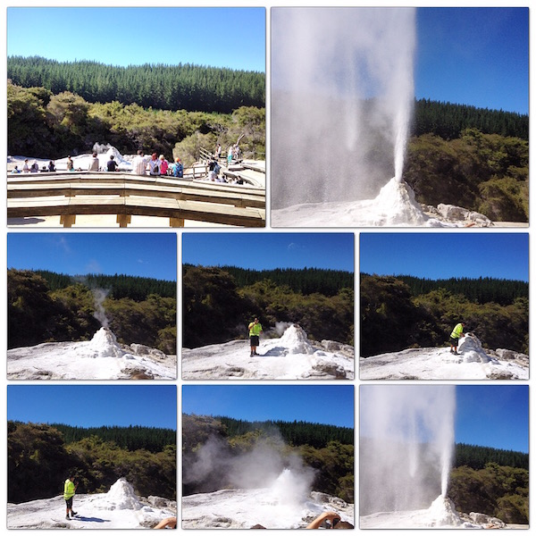 Lady Knox Geyser in Waiotapu New ZEALAND