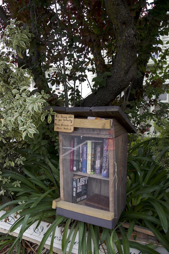 Neighborhood book exchange in Christchurch