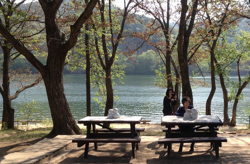 Nami Island- Winter Sonata site