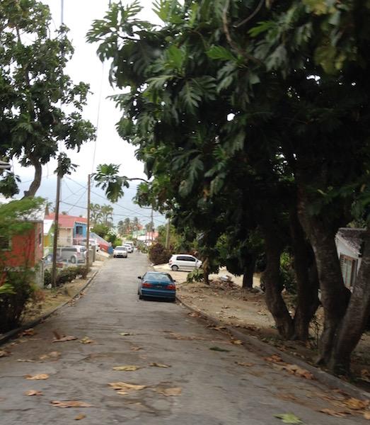 A neighborhood in Barbados