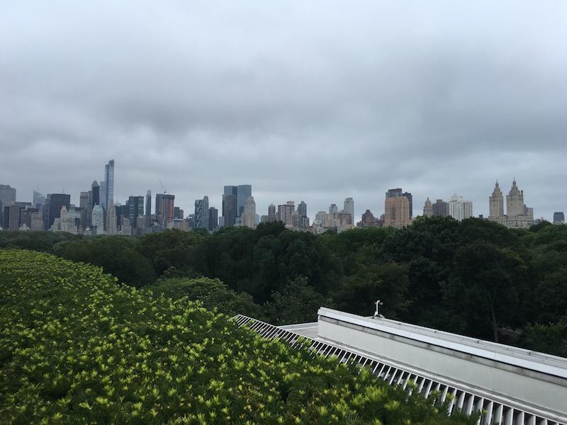 View from Met museum Rooftop