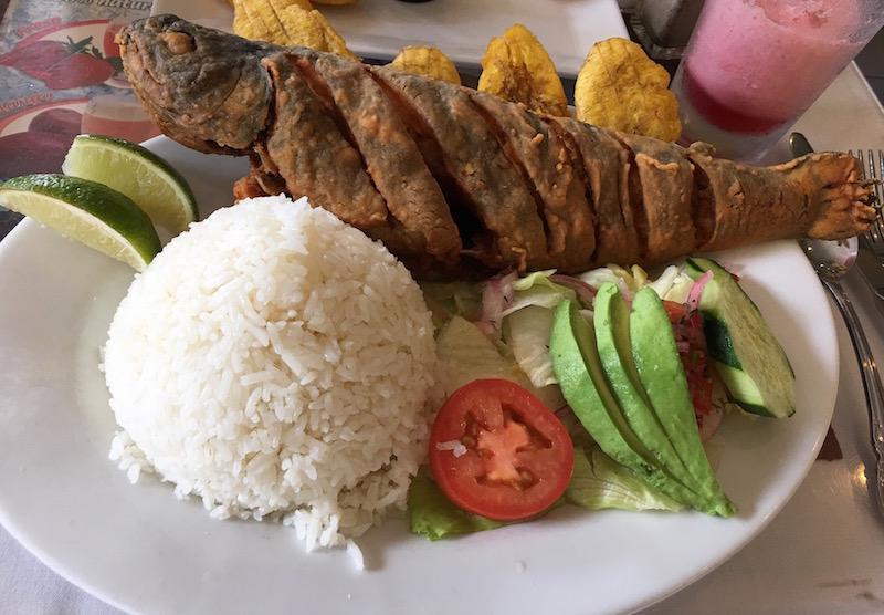 Trucha frita at Ecuadorian restaurant in Astoria