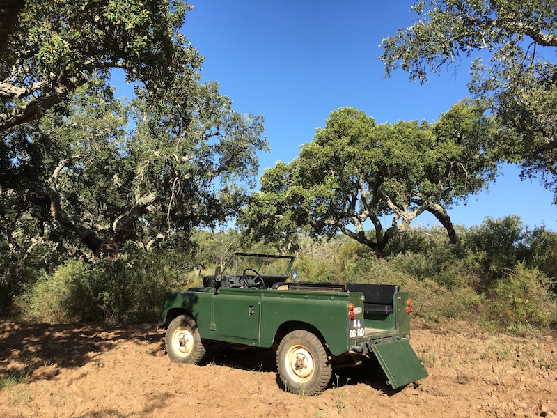 Cork Farm Jeep Tour Portugal